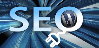wordpress seo hataları