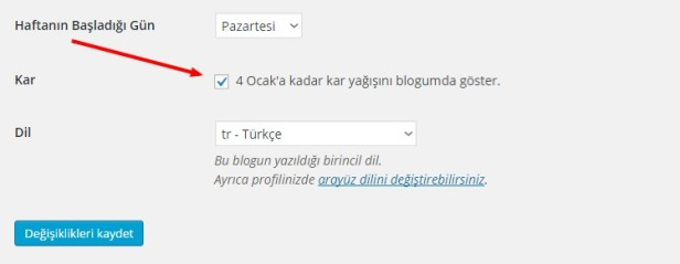 wordpress.com kar efekti