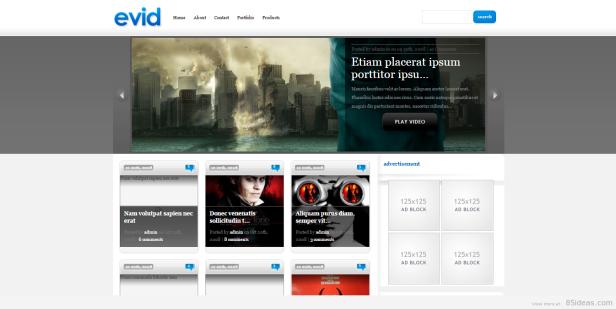 eVid WordPress video teması